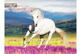 Paard uitgevoerd in bloemen