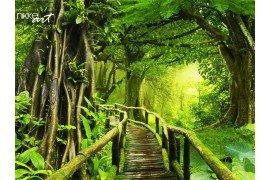 Forest met houten lopen pad