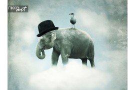 Fantasie olifant vliegen