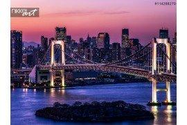 Baai van Tokio op de brug van de regenboog