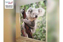 Fotobehang: behang met een unieke foto