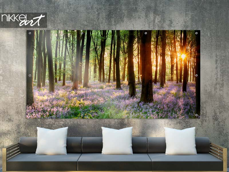 Tuinposter Bluebell hout sunrise