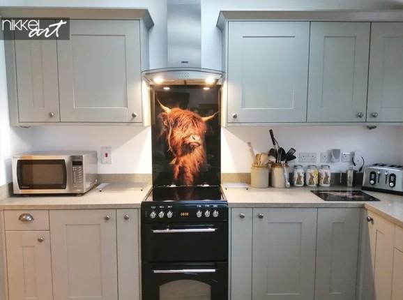 Schotse hooglander op keukenachterwand