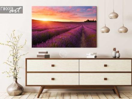Foto op Canvas Lavendel