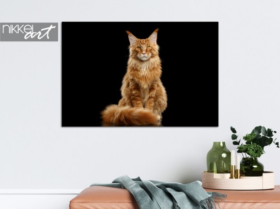 Foto van je kat op aluminium