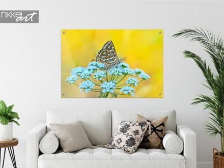 Schilderij op Glas Vlinder