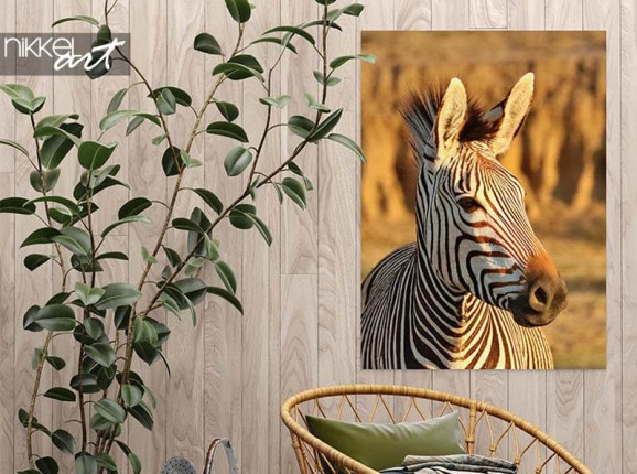 Tuinposter met zebra