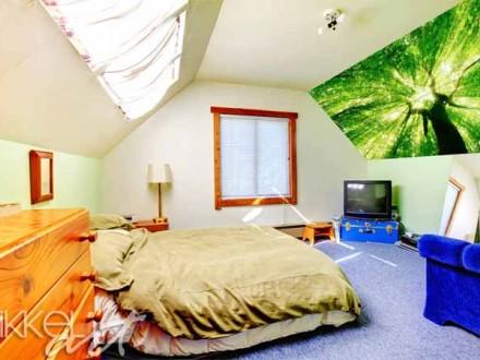 Inspiratie op de muur   fotostickers   bossen