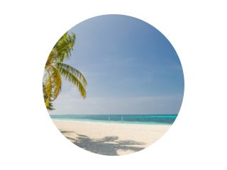 Tropical beach panorama as summer landscape with beach swing or hammock and white sand and calm sea for beach banner. Perfect beach scene vacation and summer holiday concept. Boost up color process